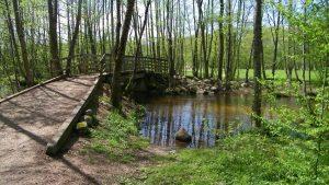 Saute Ruisseau